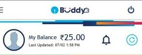 state bank buddy rs25 proof