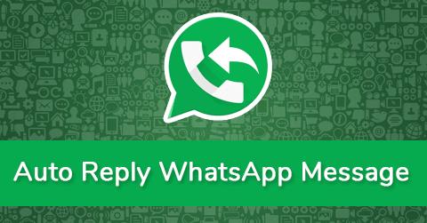 Auto Reply Message in WhatsApp